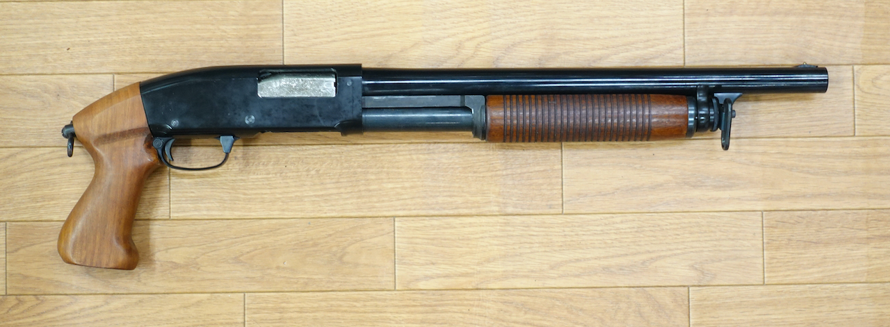 画像_M31大門タイプ 初期モデル 10万8千円01